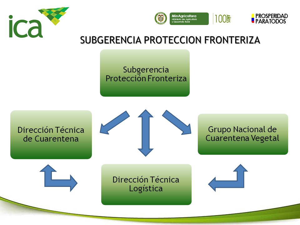 PROSPERIDAD PARA TODOS MinAgricultura Ministerio de Agricultura y Desarrollo Rural SUBGERENCIA PROTECCION FRONTERIZA Prevenir el ingreso de plagas y enfermedades al país (Primera barrera sanitaria).