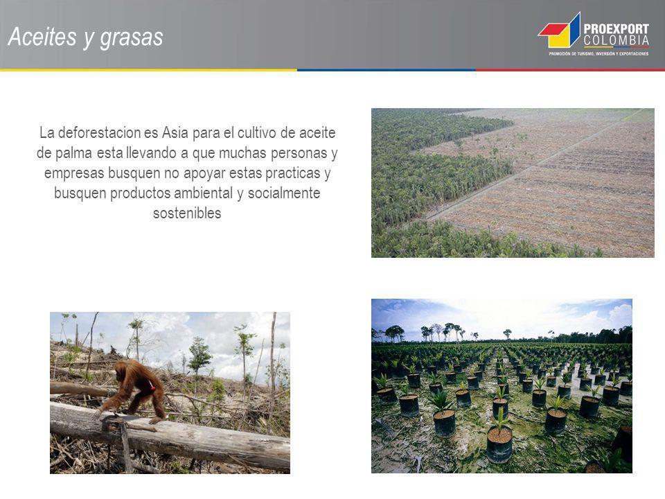 Aceites y grasas La deforestacion es Asia para el cultivo de aceite de palma esta llevando a que muchas personas y empresas busquen no apoyar estas pr
