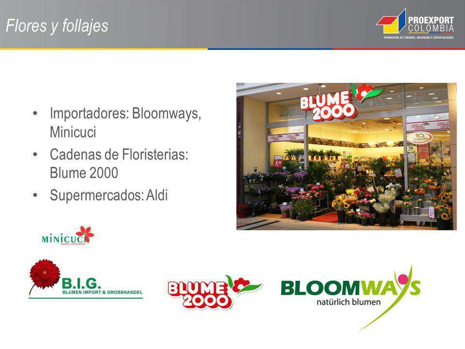 Flores y follajes Importadores: Bloomways, Minicuci Cadenas de Floristerias: Blume 2000 Supermercados: Aldi