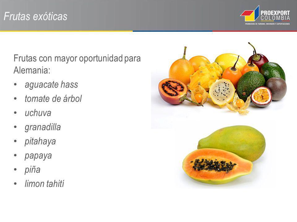 Frutas exóticas Frutas con mayor oportunidad para Alemania: aguacate hass tomate de árbol uchuva granadilla pitahaya papaya piña limon tahití