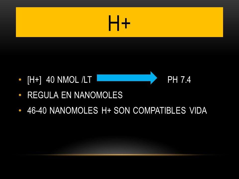 H+ [H+] 40 NMOL /LT PH 7.4 REGULA EN NANOMOLES 46-40 NANOMOLES H+ SON COMPATIBLES VIDA