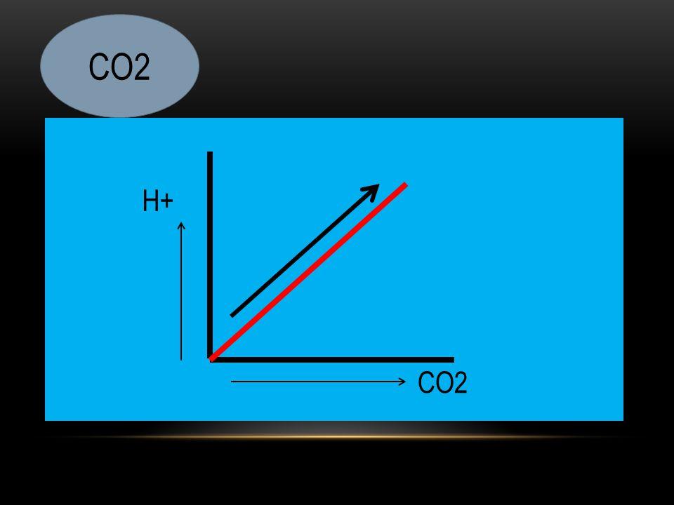 H+ CO2
