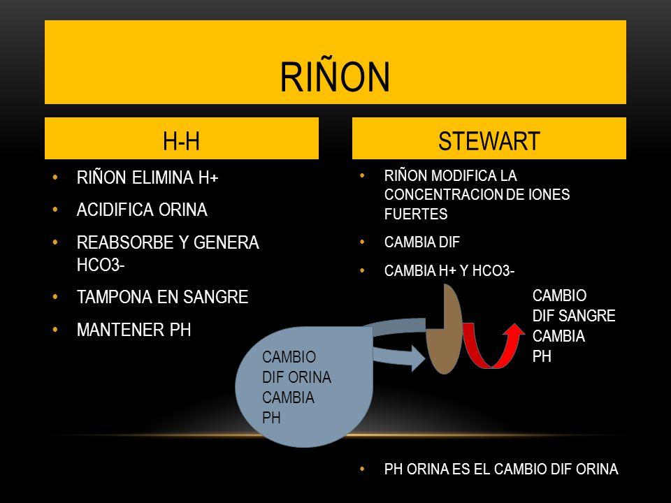 RIÑON MODIFICA LA CONCENTRACION DE IONES FUERTES CAMBIA DIF CAMBIA H+ Y HCO3- PH ORINA ES EL CAMBIO DIF ORINA RIÑON ELIMINA H+ ACIDIFICA ORINA REABSORBE Y GENERA HCO3- TAMPONA EN SANGRE MANTENER PH RIÑON H-HSTEWART CAMBIO DIF SANGRE CAMBIA PH CAMBIO DIF ORINA CAMBIA PH