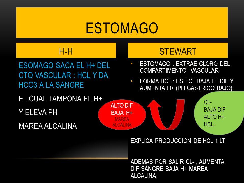 ESTOMAGO : EXTRAE CLORO DEL COMPARTIMENTO VASCULAR FORMA HCL : ESE CL BAJA EL DIF Y AUMENTA H+ (PH GASTRICO BAJO) EXPLICA PRODUCCION DE HCL 1 LT ADEMAS POR SALIR CL-, AUMENTA DIF SANGRE BAJA H+ MAREA ALCALINA ESOMAGO SACA EL H+ DEL CTO VASCULAR : HCL Y DA HCO3 A LA SANGRE EL CUAL TAMPONA EL H+ Y ELEVA PH MAREA ALCALINA ESTOMAGO H-HSTEWART CL- BAJA DIF ALTO H+ HCL- ALTO DIF BAJA H+ MAREA ALCALINA