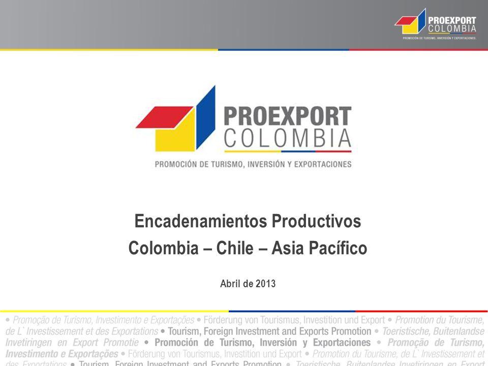 Factores para identificar posibles encadenamientos productivos: Algunas empresas chilenas que exportan el producto final al mundo.