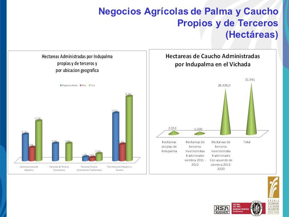 Haga clic para cambiar el estilo de título UNI-PAE-FO-125 R3 10-Ene-08 Negocios Agrícolas de Palma y Caucho Propios y de Terceros (Hectáreas)