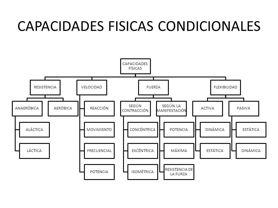 CAPACIDADES FISICAS CONDICIONALES CAPACIDADES FÍSICAS RESISTENCIA ANAERÓBICA ALÁCTICA LÁCTICA AERÓBICA VELOCIDAD REACCIÓN MOVIMIENTO FRECUENCIAL POTEN