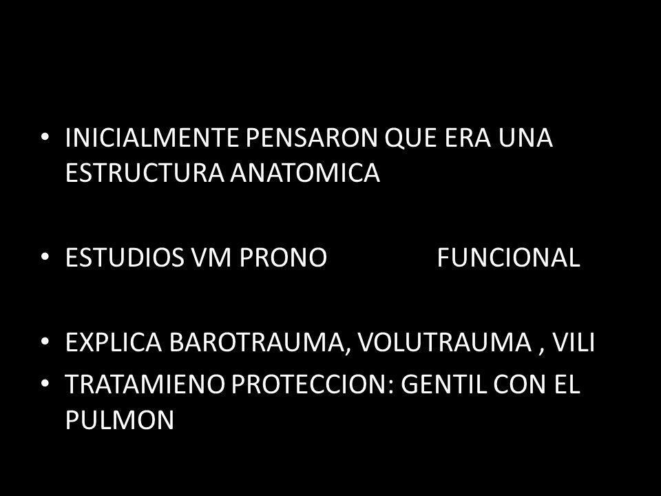 PELIGROSO : VT/AREA BABY LUNG + PEQUEÑO ES EL BAY LUNG MAS RIESGO VM NO SEGURA