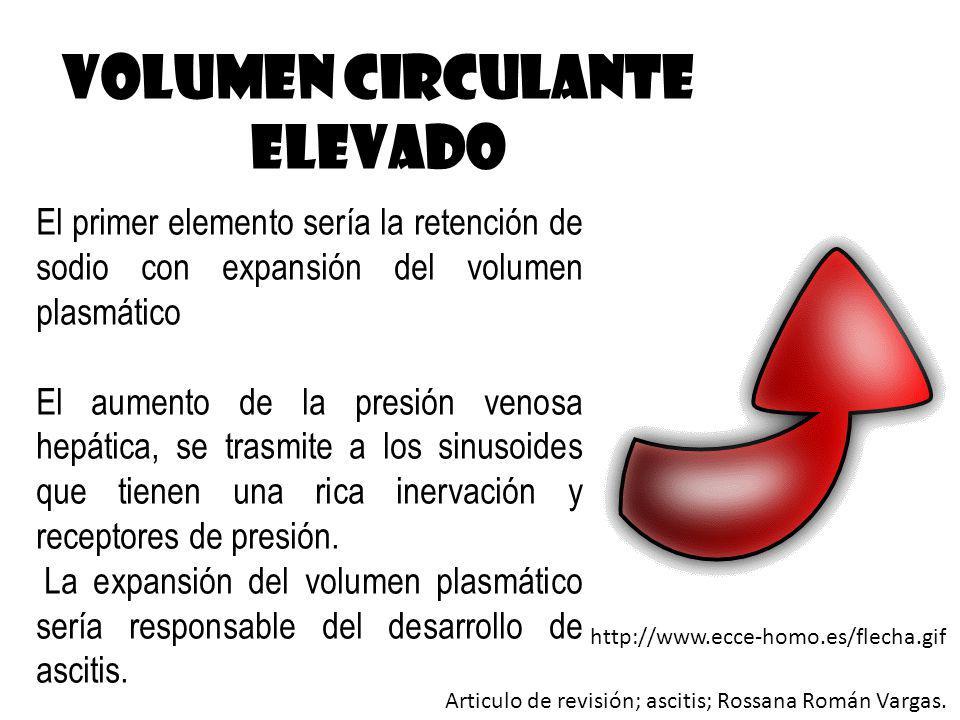 Volumen circulante ELEVADO El primer elemento sería la retención de sodio con expansión del volumen plasmático El aumento de la presión venosa hepátic