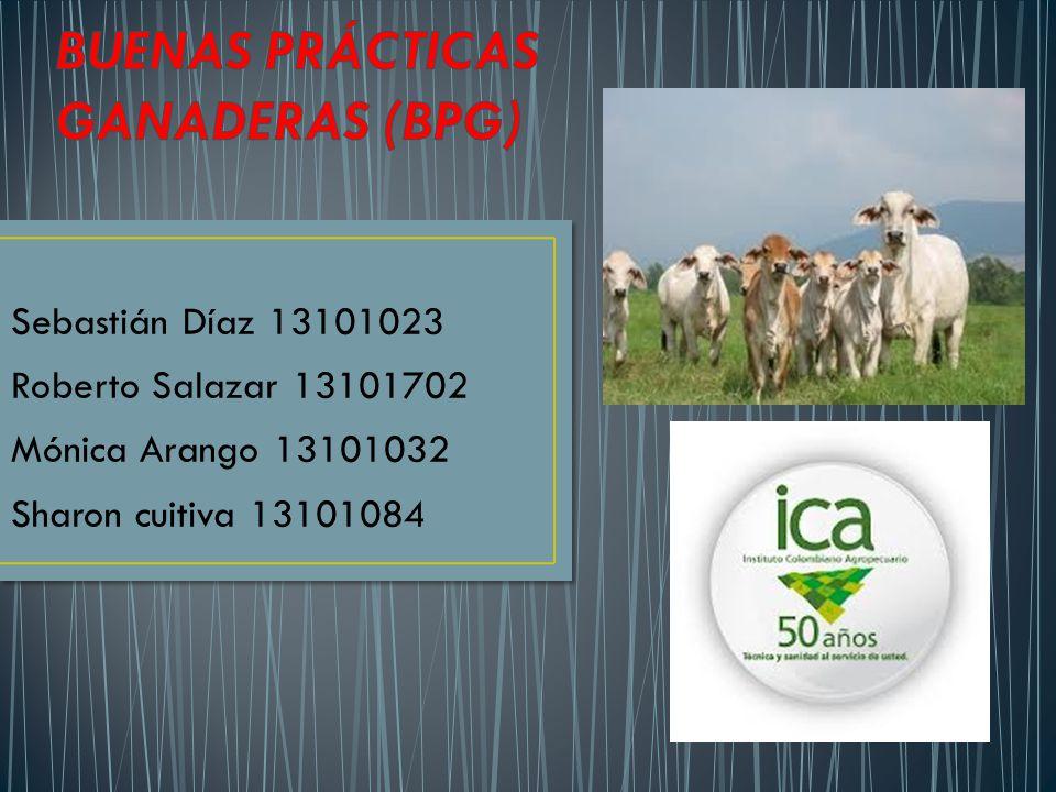 Sebastián Díaz 13101023 Roberto Salazar 13101702 Mónica Arango 13101032 Sharon cuitiva 13101084