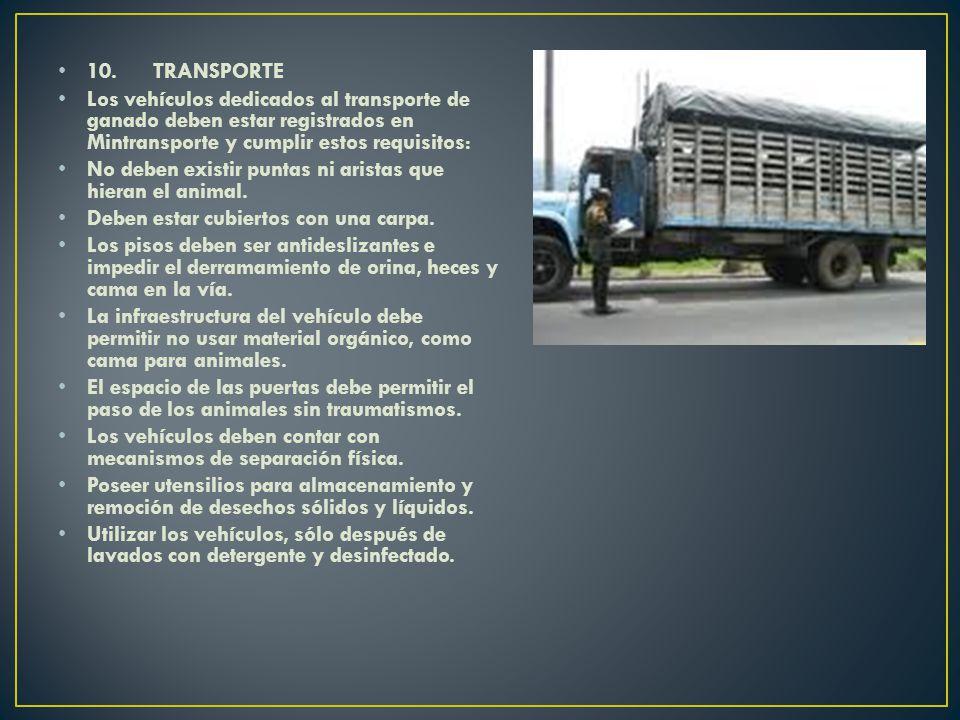10. TRANSPORTE Los vehículos dedicados al transporte de ganado deben estar registrados en Mintransporte y cumplir estos requisitos: No deben existir p
