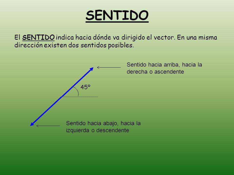 SENTIDO El SENTIDO indica hacia dónde va dirigido el vector.