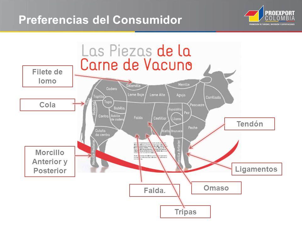 Preferencias del Consumidor Filete de lomo Morcillo Anterior y Posterior Tendón Omaso Falda. Tripas Ligamentos Cola