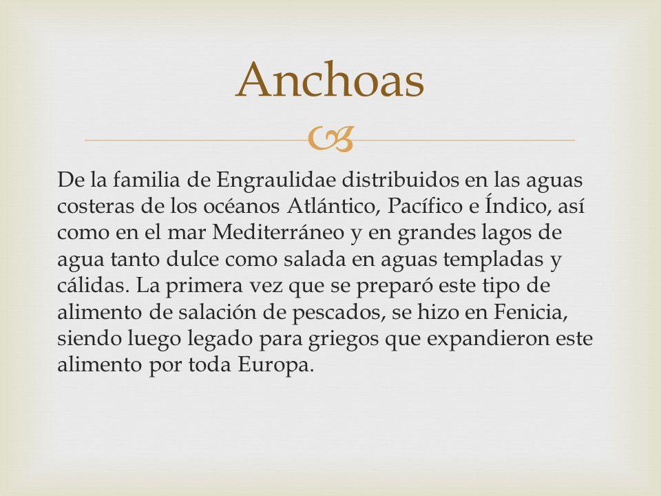 De la familia de Engraulidae distribuidos en las aguas costeras de los océanos Atlántico, Pacífico e Índico, así como en el mar Mediterráneo y en gran