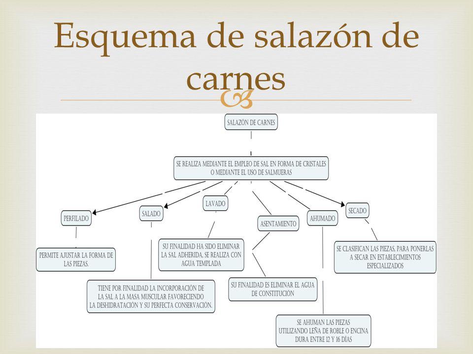 Cecina Jamón y Jamon serrano Lacón Algunos alimentos en salazón de carnes: