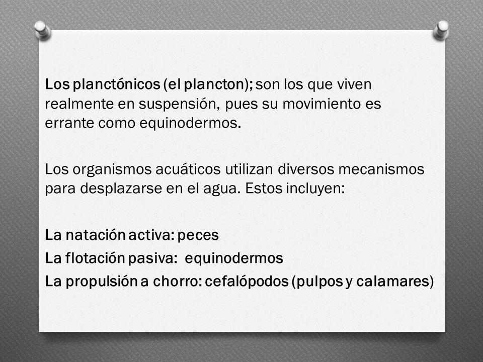 Los planctónicos (el plancton); son los que viven realmente en suspensión, pues su movimiento es errante como equinodermos. Los organismos acuáticos u
