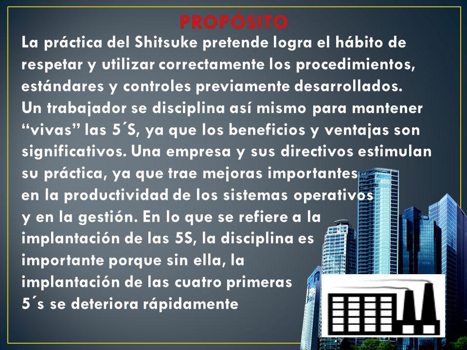 La práctica del Shitsuke pretende logra el hábito de respetar y utilizar correctamente los procedimientos, estándares y controles previamente desarrol