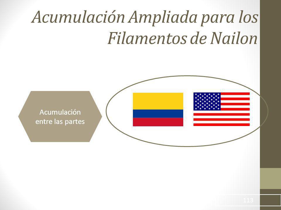 Acumulación Ampliada para los Filamentos de Nailon 113 Acumulación entre las partes