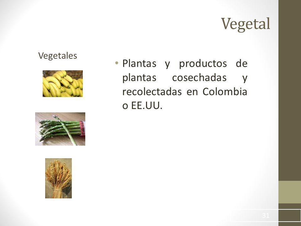 Vegetal Plantas y productos de plantas cosechadas y recolectadas en Colombia o EE.UU. 31 Vegetales