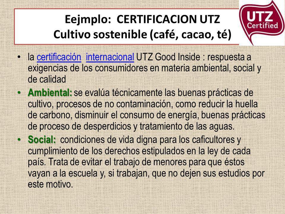 Eejmplo: CERTIFICACION UTZ Cultivo sostenible (café, cacao, té) la certificación internacional UTZ Good Inside : respuesta a exigencias de los consumi
