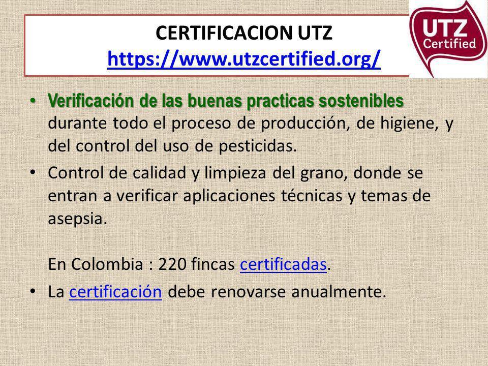 CERTIFICACION UTZ https://www.utzcertified.org/ https://www.utzcertified.org/ Verificación de las buenas practicas sostenibles Verificación de las bue