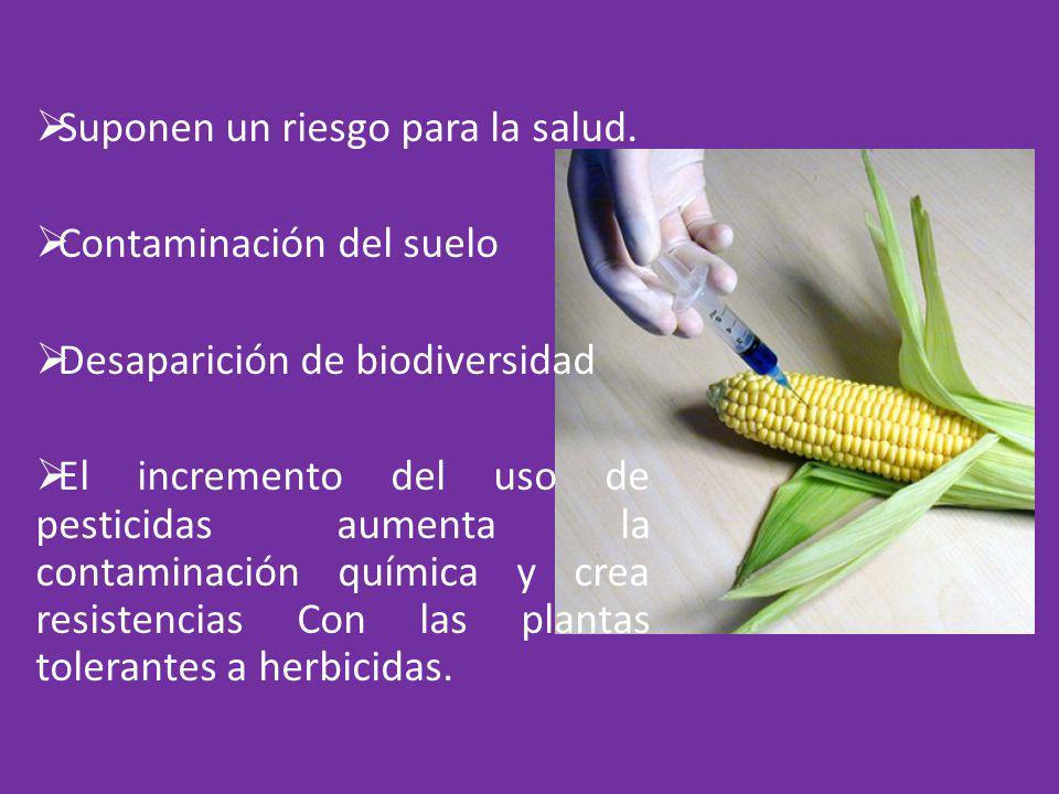 Suponen un riesgo para la salud. Contaminación del suelo Desaparición de biodiversidad El incremento del uso de pesticidas aumenta la contaminación qu