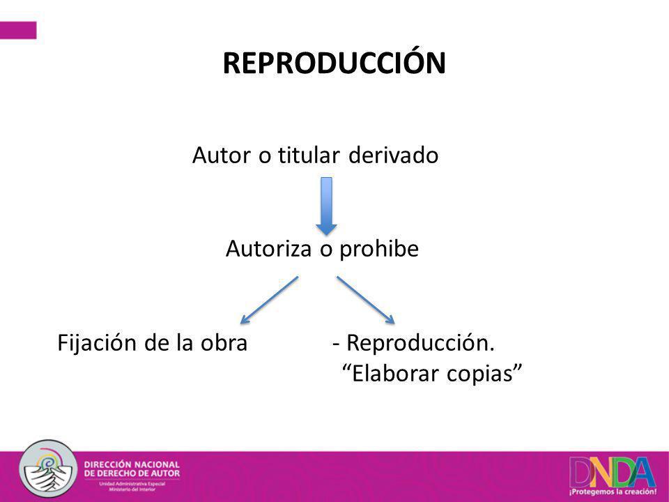 REPRODUCCIÓN Autor o titular derivado Autoriza o prohibe Fijación de la obra - Reproducción. Elaborar copias