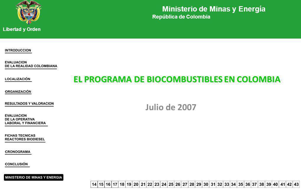 Ministerio de Minas y Energía República de Colombia Libertad y Orden EL PROGRAMA DE BIOCOMBUSTIBLES EN COLOMBIA Julio de 2007