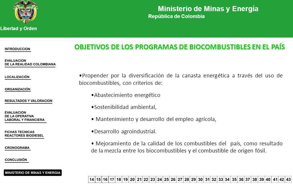 Propender por la diversificación de la canasta energética a través del uso de biocombustibles, con criterios de: Abastecimiento energético Sostenibili