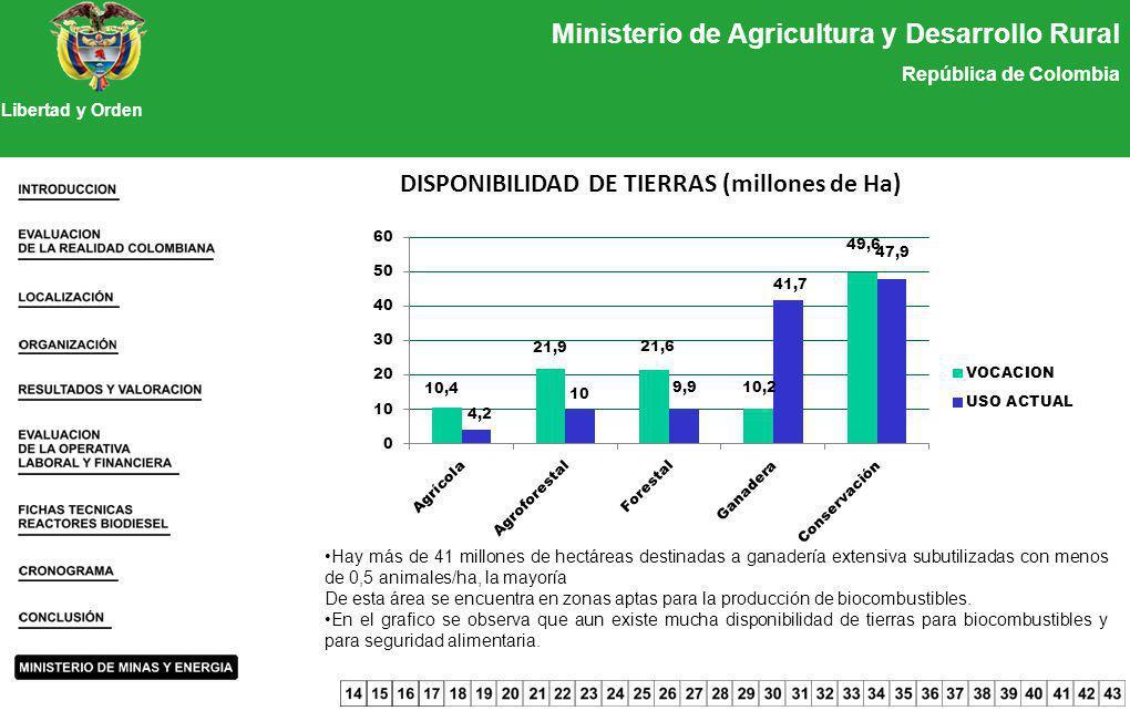 Ministerio de Agricultura y Desarrollo Rural República de Colombia Libertad y Orden DISPONIBILIDAD DE TIERRAS (millones de Ha) Hay más de 41 millones