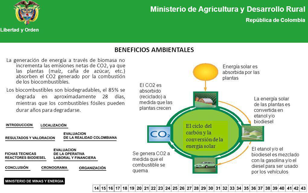 Ministerio de Agricultura y Desarrollo Rural República de Colombia Libertad y Orden BENEFICIOS AMBIENTALES La generación de energía a través de biomas