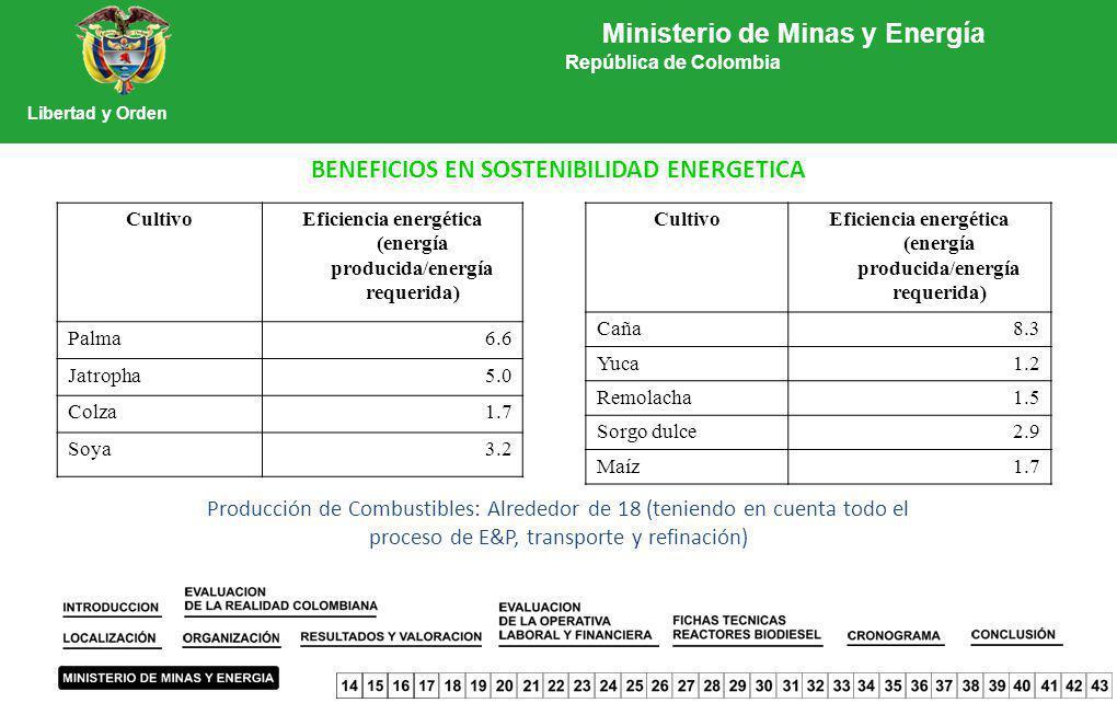 BENEFICIOS EN SOSTENIBILIDAD ENERGETICA CultivoEficiencia energética (energía producida/energía requerida) Caña8.3 Yuca1.2 Remolacha1.5 Sorgo dulce2.9