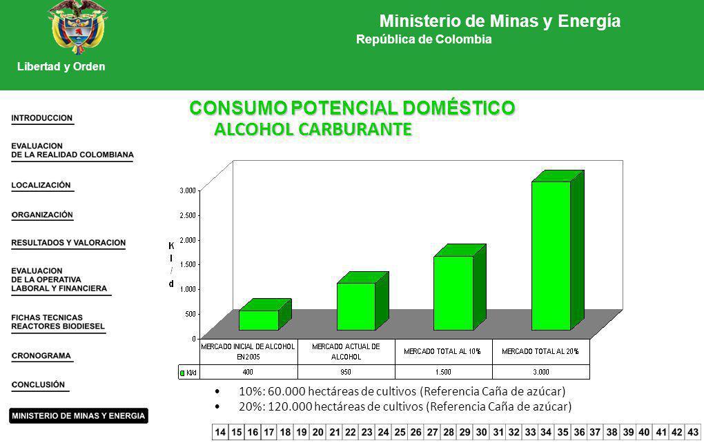 CONSUMO POTENCIAL DOMÉSTICO ALCOHOL CARBURANTE 10%: 60.000 hectáreas de cultivos (Referencia Caña de azúcar) 20%: 120.000 hectáreas de cultivos (Refer