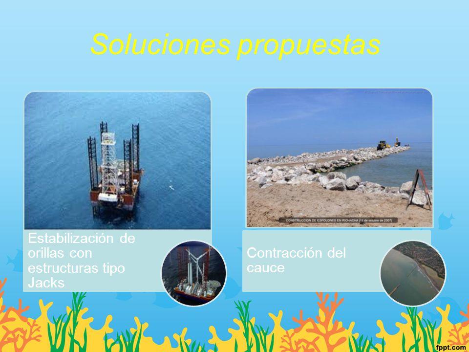 Soluciones propuestas Estabilización de orillas con estructuras tipo Jacks Contracción del cauce