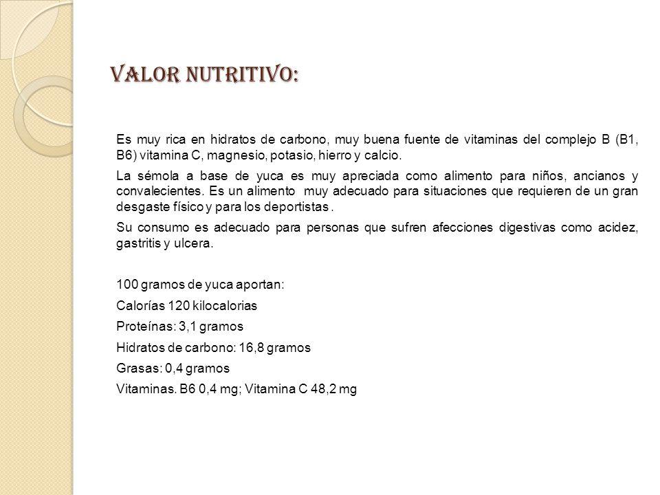 VALOR NUTRITIVO: Es muy rica en hidratos de carbono, muy buena fuente de vitaminas del complejo B (B1, B6) vitamina C, magnesio, potasio, hierro y calcio.