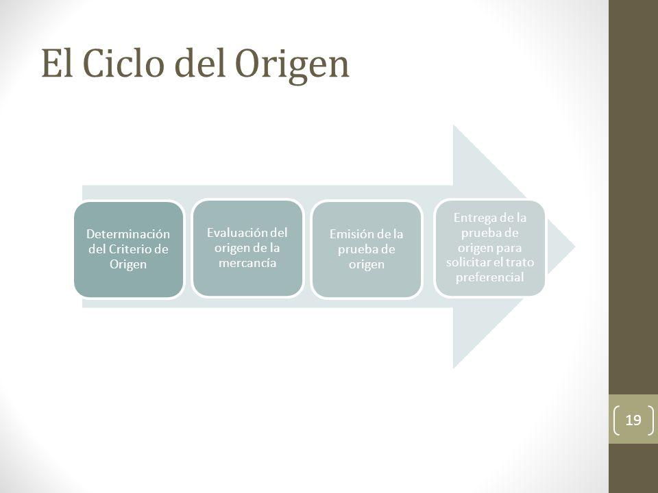 El Ciclo del Origen 19 Determinación del Criterio de Origen Evaluación del origen de la mercancía Emisión de la prueba de origen Entrega de la prueba de origen para solicitar el trato preferencial
