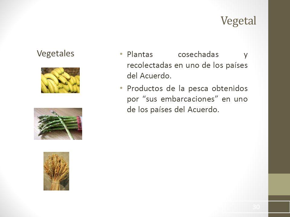 Vegetal Plantas cosechadas y recolectadas en uno de los países del Acuerdo.