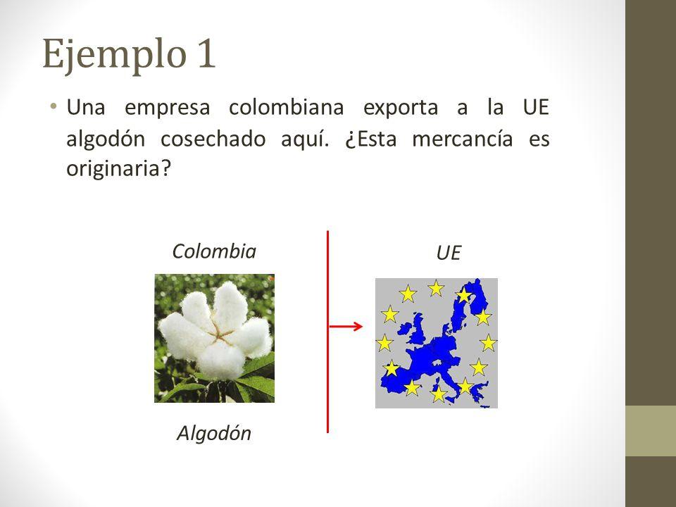 Una empresa colombiana exporta a la UE algodón cosechado aquí.
