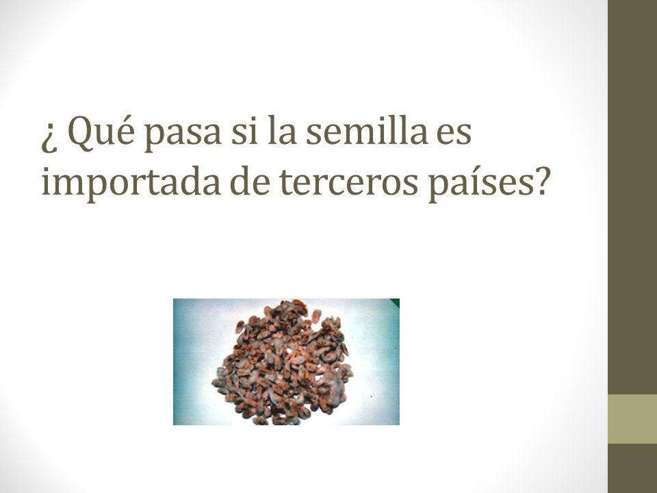 ¿ Qué pasa si la semilla es importada de terceros países?
