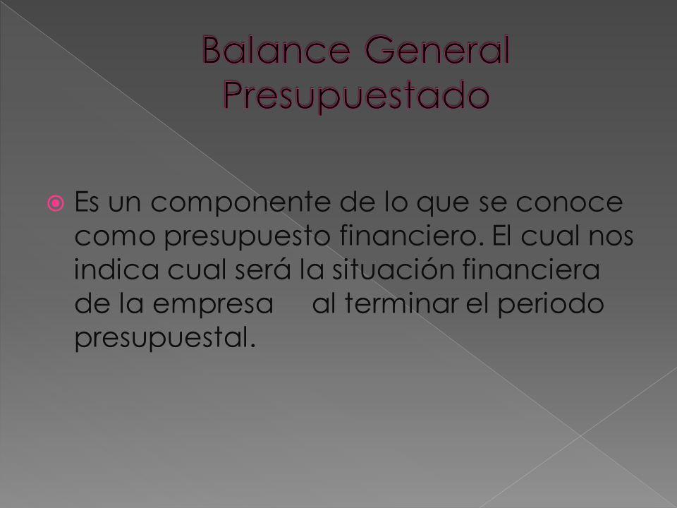 Es un componente de lo que se conoce como presupuesto financiero. El cual nos indica cual será la situación financiera de la empresa al terminar el pe