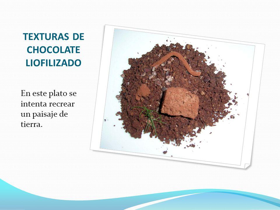 TEXTURAS DE CHOCOLATE LIOFILIZADO En este plato se intenta recrear un paisaje de tierra.