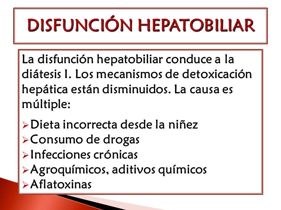 La disfunción hepatobiliar conduce a la diátesis I. Los mecanismos de detoxicación hepática están disminuidos. La causa es múltiple: Dieta incorrecta