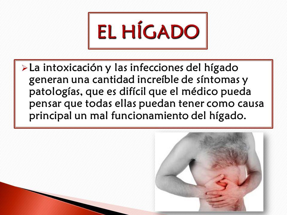 La intoxicación y las infecciones del hígado generan una cantidad increíble de síntomas y patologías, que es difícil que el médico pueda pensar que to