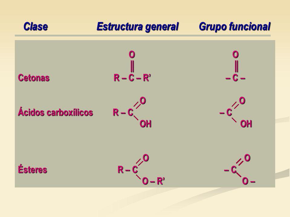 O O O O Cetonas R – C – R – C – O O O O Ácidos carboxílicos R – C – C OH OH OH OH O O O O Ésteres R – C – C O – R O – O – R O – Clase Estructura general Grupo funcional Clase Estructura general Grupo funcional