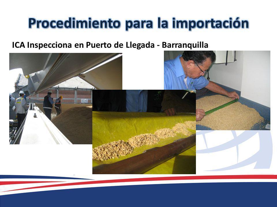 ICA Inspecciona en Puerto de Llegada - Barranquilla