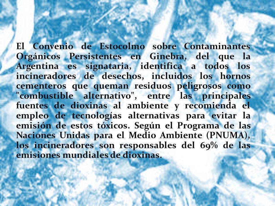 El Convenio de Estocolmo sobre Contaminantes Orgánicos Persistentes en Ginebra, del que la Argentina es signataria, identifica a todos los incinerador
