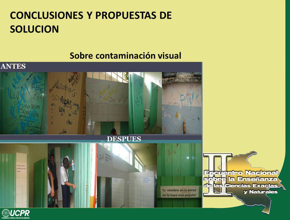CONCLUSIONES Y PROPUESTAS DE SOLUCION Sobre contaminación visual