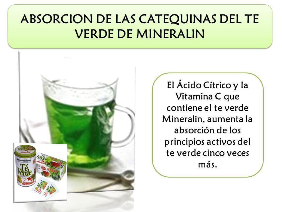 ABSORCION DE LAS CATEQUINAS DEL TE VERDE DE MINERALIN El Ácido Cítrico y la Vitamina C que contiene el te verde Mineralin, aumenta la absorción de los