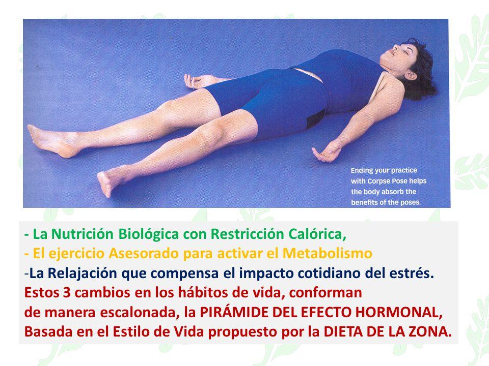 - La Nutrición Biológica con Restricción Calórica, - El ejercicio Asesorado para activar el Metabolismo -La Relajación que compensa el impacto cotidia