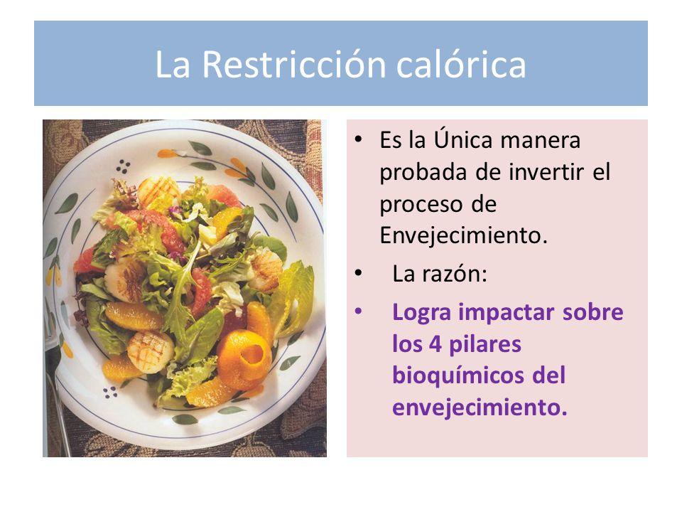La Restricción calórica Es la Única manera probada de invertir el proceso de Envejecimiento. La razón: Logra impactar sobre los 4 pilares bioquímicos
